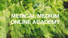 Medical Medium Courses