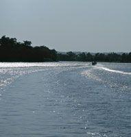 En la actualidad circulan por el Canal del Dique, embarcaciones que transportan principalmente petróleo y carbón y unen la población de Calamar con Cartagena.