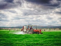 Field by Turgut Kirkgoz on 500px