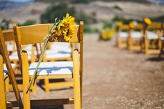 sunflowers tied to chairs
