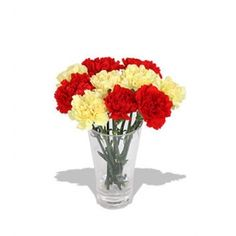 Carnations flowers for Valentine's Day. Send these stunning one dozen of Red and Yellow Carnations with vase to your wife. Yellow Carnations, Online Flower Shop, Valentines Flowers, Classic Beauty, Fascinator, Glass Vase, Fragrance, Bouquet, Red