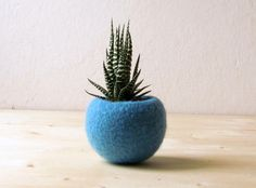 Felt succulent planter / turquoise felted bowl by theYarnKitchen