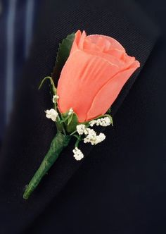 set of 7CORAL Reef (David's Bridal) Rose Boutonniere Wedding Prom Quinceanera #Angelisabella