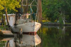 Born in the Bayou by Vicki on Etsy