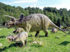 South Dakota State Fossil - Triceratops