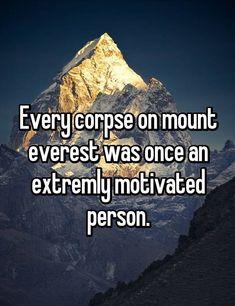 Fun fact on Mount Everest Haha, Funny Jokes, Hilarious, 9gag Funny, Powerful Words, Monday Motivation, Business Motivation, Best Funny Pictures, Funny Pics