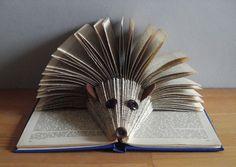 Hedgehog Book