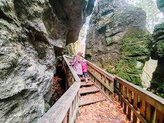 "How to get to ""Jacob's Ladder"" in Mono Cliffs Provincial Park Ontario 