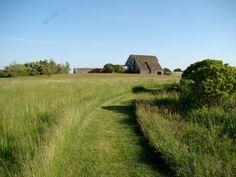 sagaponack-garden-norman-jaffe-laguardia-lawn-path-gardenista.