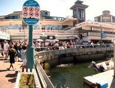 Redondo Beach, Ca---fresh fish market