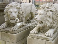 #Stone #Lion - In our artisan shop, located in Monteviale (Vicenza), statues and sculptures of various sizes are carved in Renaissance style to beautify parks, villas and gardens.