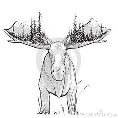 Illustration about Animal in the nature drawing. Has white undercoat. Vector Illustration of artwork, nature, drawing - 44776992 Alaska Tattoo, Berg Illustration, Mountain Illustration, Moose Decor, Moose Art, Moose Head, Animal Drawings, Art Drawings, Wilderness Tattoo