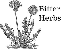 Bitter herbs and foods stimulate digestion by triggering the release of enzymes, hormones and digestive secretions such as saliva, acids and bile.  Because of this fact various organs such as the liver, gallbladder and pancreas benefit from their use.