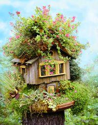 Fairy House/Birdhouse...