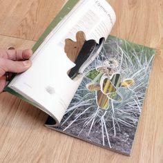 Dug book