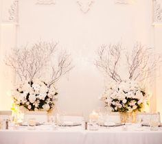 Whites and branches