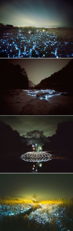 "Starry Night: Light Installations by Lee Eunyeol. ""On a l'impression que le ciel est à nos pieds, que les étoiles et les galaxies se nichent à travers les herbes ou parcourent les fentes de la terre sèche."""