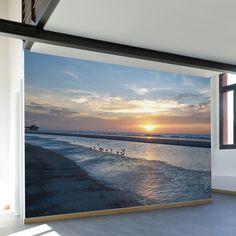 Paul Moore's Sunset Seagull Beach Mural wall decal
