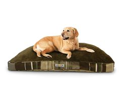 ASPCA Reversible Striped Gusseted Pillow Bed -- Check out this great product. (This is an affiliate link and I receive a commission for the sales)