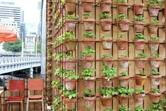 This time he uses strawberries in terra-cotta pots to scale the exterior walls. Description from cherryandme.com. I searched for this on bing.com/images