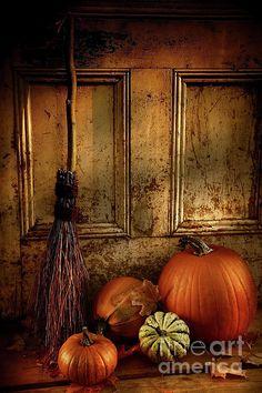 Halloween, Witch, Goblin, Black Cat, Jack-O-Lantern, Bat, Skull, Ghost, Spooky, Full Moon, Pumpkin, Trick or Treat, Autumn, Fall, Haunted, Scarecrow, Magic Potion, Creepy, Spells, Ghouls