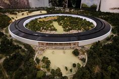 Silicon Valley Architecture