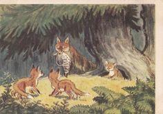 M. Kuks Fox cubs Postcard  1958. Izogiz by RussianSoulVintage