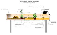 tortoise table schematic
