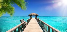 5 Things That You Probably Didn't Know about Sandals Royal Plantation - Travel Planners International #Caribbean#Jamaica#Luxury