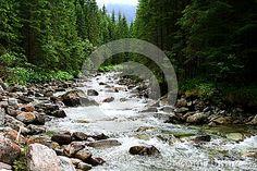 Mountain river in Tatra mountains Poland