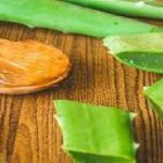Never Spend Money on Chemical Filled Medicine Again By Utilizing the Healing Benefits of Aloe Vera