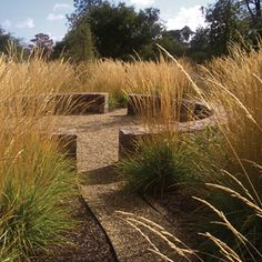 Landscape Architecture SCDA Landscaping Designers