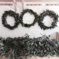 Wreath making today with @littleamy80 #wreath#christmasdecorating#nativefauna#