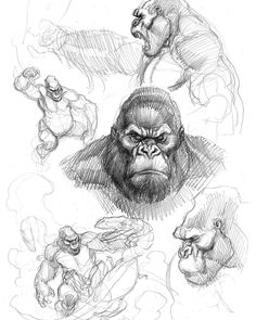 As some of you may know, I love King Kong and love drawing that hairy ape. I literally have stacks of old King Kong… Realistic Drawings, Love Drawings, Drawing Sketches, Art Drawings, Sketching, King Kong, Animal Sketches, Animal Drawings, Gorilla Tattoo