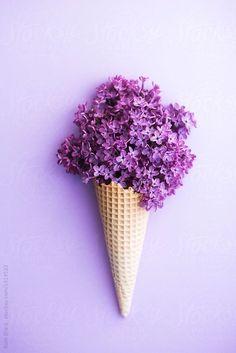 flower love   flower ice cream   purple vibes   springtime   spring love   Fitz & Huxley   www.fitzandhuxley.com