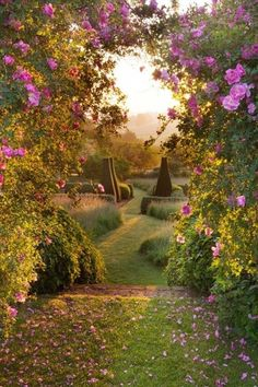 Love the contrast of mown paths, meadow, tightly clipped topiary and roses. Expansive, touching.