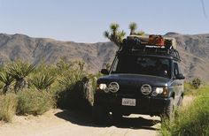 Landrover Discovery S 2004 Overland Build with BjaRack, Eezi Awn Roof Top Tent, Custom Bumper...