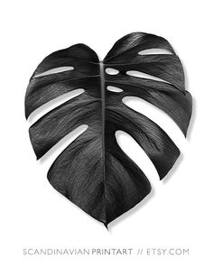 Digital download Art // Monstera palm leaf - black & white Welcome to…