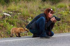 緊迫した状況のはずが・・・動物写真家たちの心を和ませた動物たちの画像22枚|ペットフィルム -犬・猫・ペットの画像・動画まとめ petfilm.biz