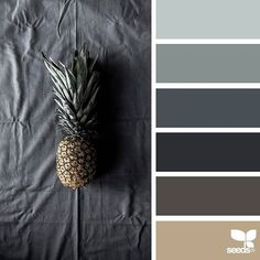today's inspiration image for { pineapple tones } is by @mijn.grid ... thank you, Sisilia, for another incredible #SeedsColor image share!