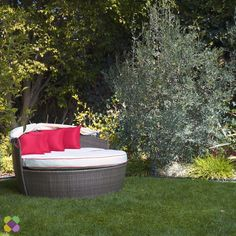 most up-to-date pic backyard landscape designs videos diy technology : An incredible, well-maintained panorama is actually every single homeowner's aspiration, nonetheless acquiring it requires time period, energy and inv. Backyard Patio Designs, Backyard Projects, Outdoor Projects, Plant Painting, Home Decor Hacks, Home Landscaping, Outdoor Living, Outdoor Decor, Porch Decorating