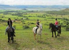 Workaway in . Help with horse trails and animal care on small guest farm. Lydenburg, South Africa