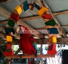 Monster Size Swing, Large Bird Swing, large parrot swing, parrot toys, macaw toy, made in USA
