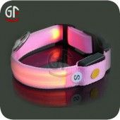 Flashing Led Pet Collar