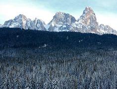 """""""Foresta dei Violini""""  Trentino  http://www.visittrentino.it/it/cosa_fare/da_vedere/dettagli/dett/foresta-dei-violini"""