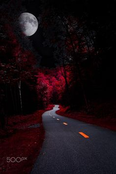 """Alice in Quebec - ᅡᄅ 2016 Thousand Word Images by Dustin Abbott  I was in the mood to step through the looking glass this morning, and this image of one of the great cycling trails in Mont Tremblant, Quebec really lended itself to some """"artistic license"""".  The moon shot was taken with a Tamron 150-600 VC lens.  Take a step into the mystery and wonder of """"Alice in Quebec"""".   <b>Technical Information, Canon EOS 5dMK2, Canon EF 35mm f/2, Processed in Adobe Lightroom CC, Adobe Photoshop CC…"""