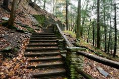 CCC built stairway, one of many found in the park.