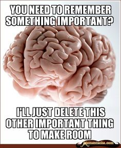 Funny pictures about Scumbag Brain. Oh, and cool pics about Scumbag Brain. Also, Scumbag Brain. Scumbag Brain, Brain Meme, Best Memes, Funny Memes, It's Funny, Funny Pics, Funny Quotes, Movie Quotes, Funniest Memes