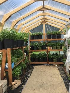 We enlist five outstanding best greenhouse ideas for beginners. These greenhouse ideas will enable you to devise strategies to shape the best possible model. Greenhouse Academy, Cheap Greenhouse, Greenhouse Interiors, Greenhouse Effect, Indoor Greenhouse, Backyard Greenhouse, Greenhouse Growing, Greenhouse Wedding, Greenhouse Plans