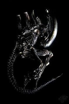 "BLOGS ON - A Plea for Publication Order (""Alien) http://isawlightningfall.blogspot.com/2014/03/a-plea-for-publication-order-alien.html"